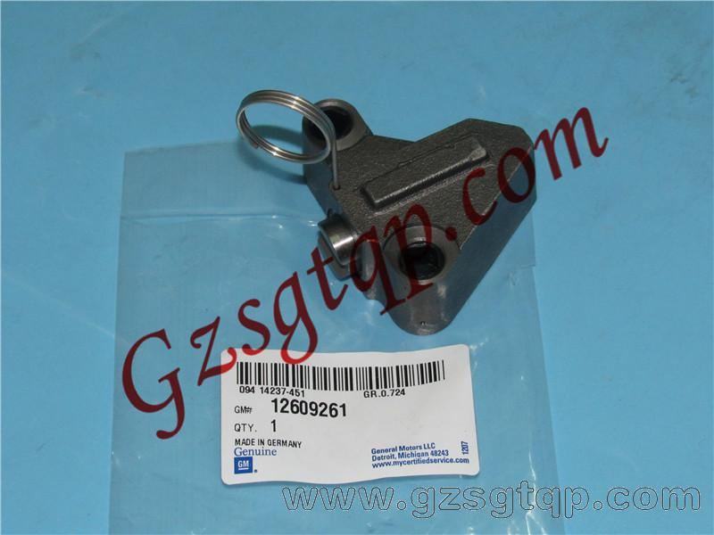 Timing Chain Tensioner Adjuster for Cadillac Opel Vauxhall Chevrolet 12609261/正时链顶